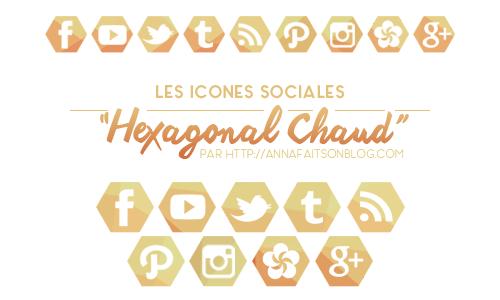 Icones sociales Hexagonal Chaud